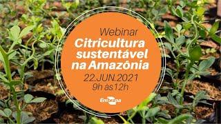 Webinar Citricultura Sustentável na Amazônia