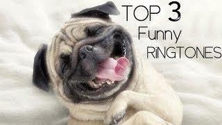 Gambar cover Top 3 Funny Ringtones 2018 + download links
