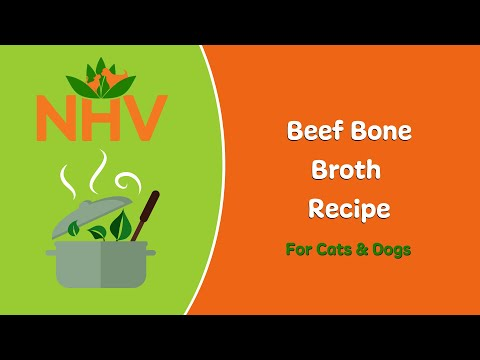 DIY Beef Bone Broth Recipe For Cats & Dogs