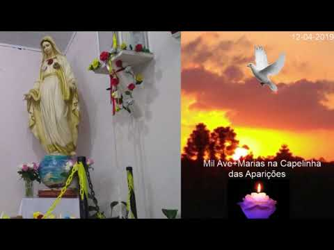 Message of Our Lady delivered on April 12, 2019 in São José dos Pinhais/PR