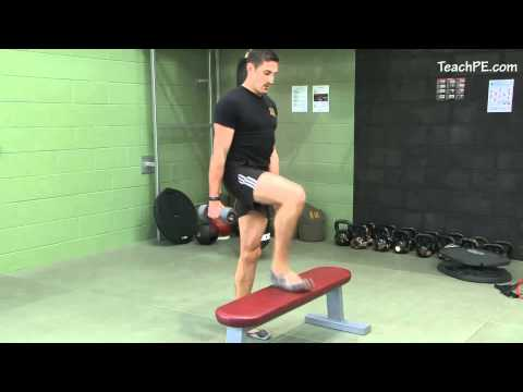 Free Weight Exercises - Dumbbell Step Up