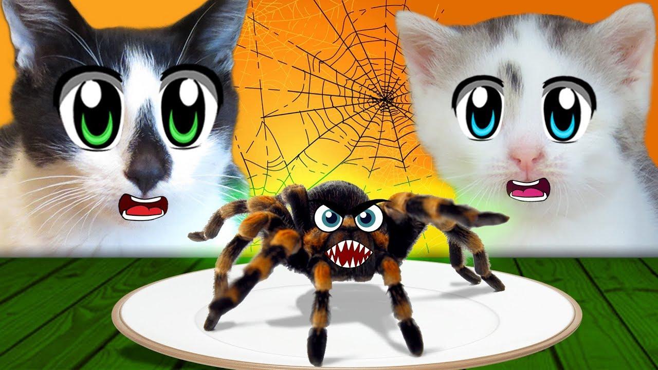 ОБЫЧНАЯ ЕДА ПРОТИВ ХЭЛЛОУИН ЕДЫ! КОТ МАЛЫШ и КОШЕЧКА МУРКА и Halloween Food vs REAL FOOD ЧЕЛЛЕНДЖ