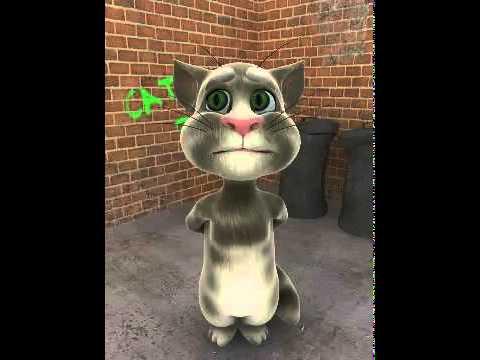Mèo Hát Ôi Tình Yêu