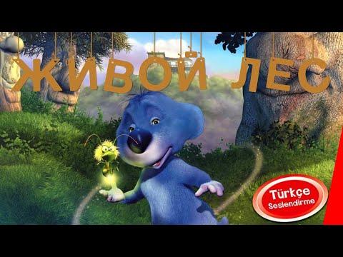 Мультфильм живой лес 2