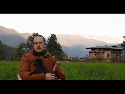 TOGLIFE #21 - Nikon D5 & Puppies in the Himalayan Mountains of Bhutan