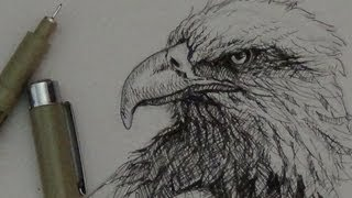 Pen & Ink Tutorial | How to draw an eagle head