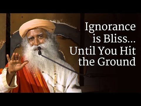 Ignorance is Bliss…Until You Hit the Ground