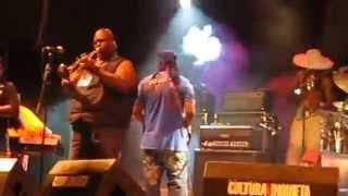 George Clinton, Funkadelic & Parliament Festival Cultura Inquieta Getafe 17/07/2014