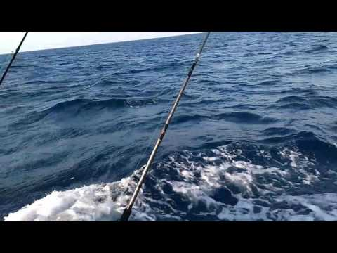 Offshore in a 1978 Robalo r200