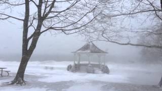 Blizzard in Niagara on the Lake