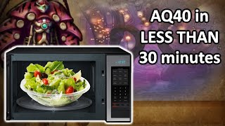 AQ40 in LESS THAN 30 minutes - Classic WoW Speedrun Review - SALAD BAKERS
