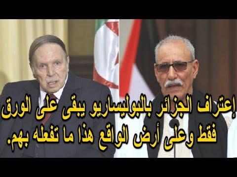 إعتراف الجزائر بالبوليساريو يبقى على الورق فقط وعلى أرض الواقع هذا ما تفعله بهم.