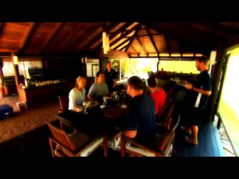Wilson Island on the Great Barrier Reef - Delaware North Companies