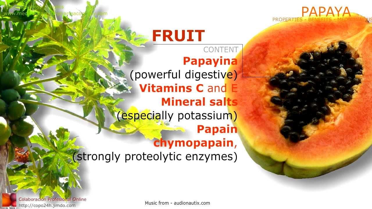 Papaya  Properties, content  Papaya Benefits - Pharmacognosy