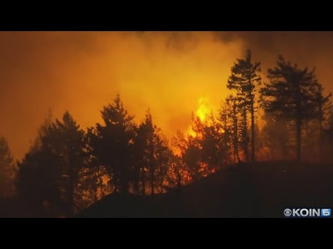 Eagle Creek Fire teen ordered to pay $36 million