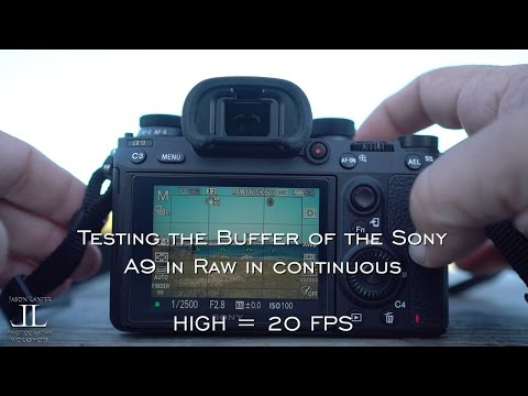 Sony A9- Buffer Real World Test!  Continuous High 20 FPS and Medium 10 FPS in Raw