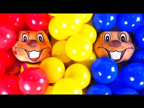 Kids Learn Colors with Paint + More | ABC Children Songs, Learning Video by Busy Beavers