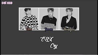Gambar cover EXO-CBX Cry OST | Arabic sub