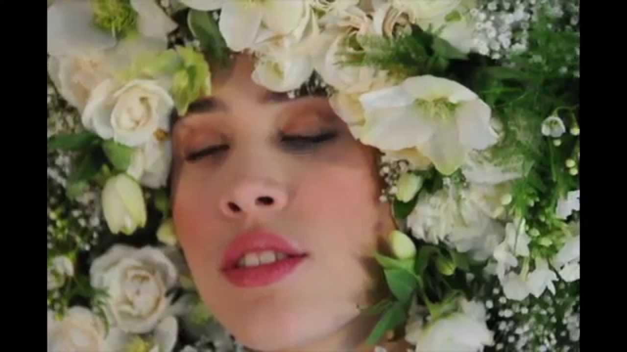 The Flower Fro By Susan Mcleary Between You Me Papillon Youtube