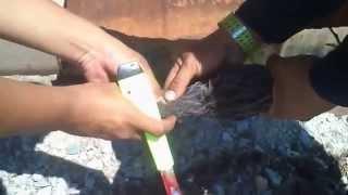 Sembelih Burung Ayam Ayam Dan Wak Wak (Selasa 6 5 2014)