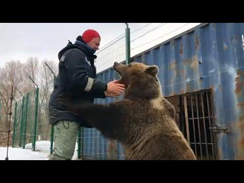 شاهد: الدب (منصور).. صديق العاملين في مطار روسي  - 13:53-2019 / 3 / 22