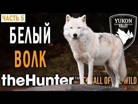 theHunter Call of the Wild #5 🐺 - Трофей: Белый Волк - Долина Юкона, Аляска