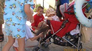 В Сочи лемур залез в коляску к ребёнку