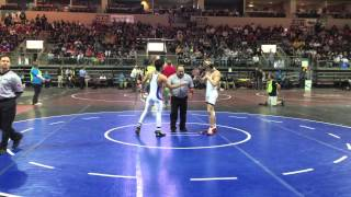 Wrestling state championships: Sights and sounds from Prescott Valley