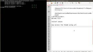 Wowza WebRTC Example
