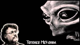 Terence McKenna - Are Aliens us from the Future?
