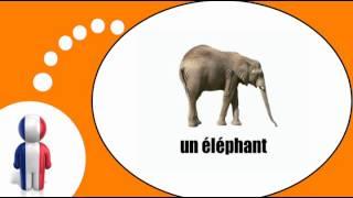 Fransk for Dansk = Dyrene # 1