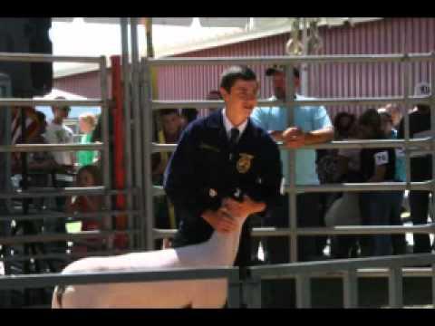 Deschutes County fair youth animal auction 2012 0-8 04.mp4