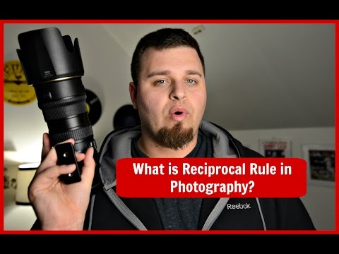 Reciprocal Rule: Master Your Shutter Speed For SHARP Photos