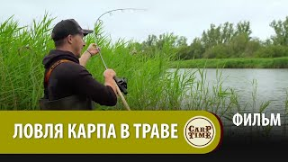 Карпфишинг ЛЕТОМ Ловля КАРПА в ТРАВЕ с Хэри ФИЛЬМ