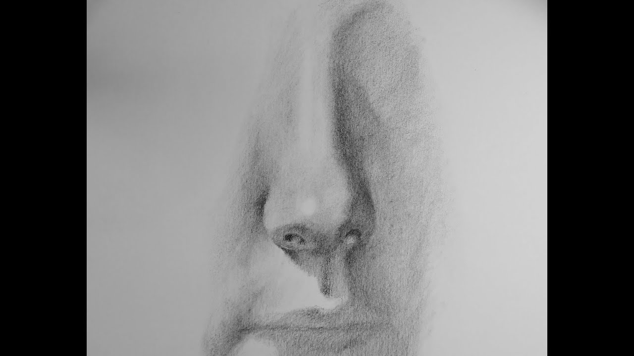 How To Draw A Realistic Nose In Pencil