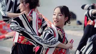 夢色歌留多/第16回 泉州YOSAKOI ゑぇじゃないか祭り(2019.10.20)
