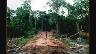 Het Amazone Woud (Lana & Lincy)