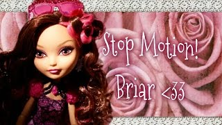 Stop Motion - Briar Beauty