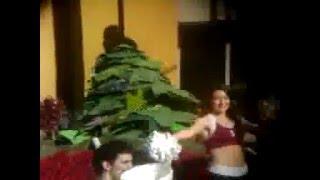 ROSE PARADE 2014:  STANFORD CHEERLEADERS & TREE