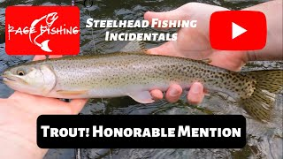 TROUT HONORABLE MENTION FILES 2021 4K Steelhead fishing incidentals during the 2021 winter season