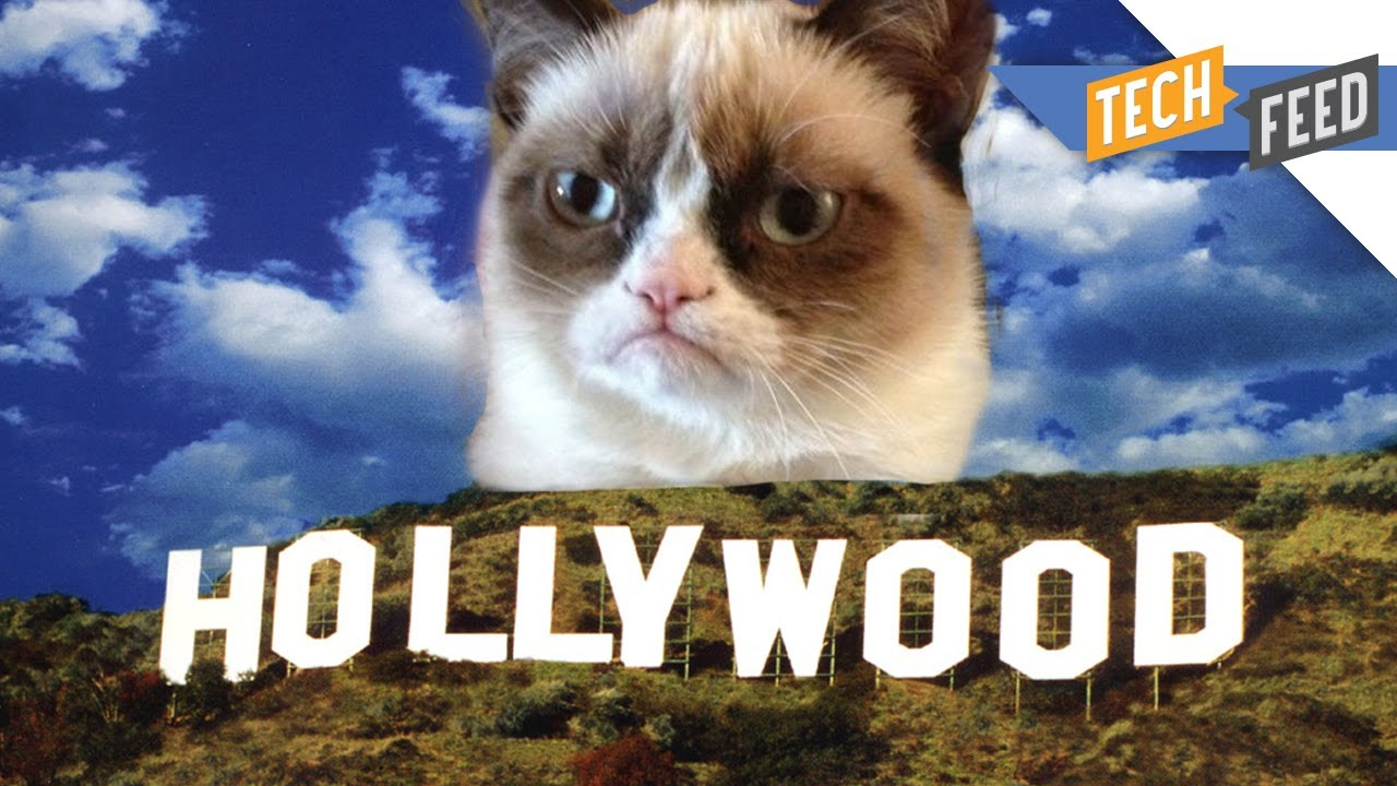 Grumpy cat the movie youtube grumpy cat the movie thecheapjerseys