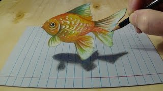 Drawing Goldfish on Lined Paper - How to Draw Goldfish for Kids - 3D Anamorphic Art