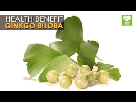 Ginkgo Biloba - Health Benefits | Health Tips