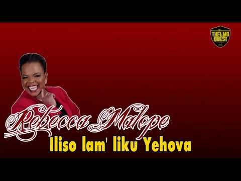 Baixar Phumlani Mgobhozi - Download Phumlani Mgobhozi | DL