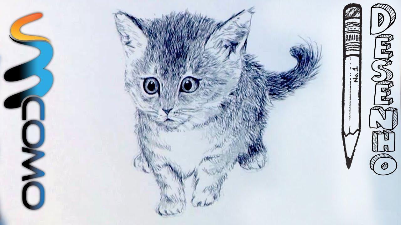 Desenhando um gato realista a caneta - YouTube