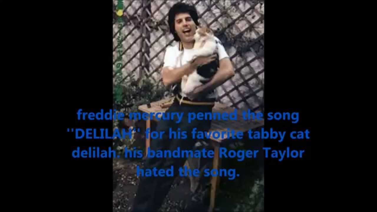 10 Real Facts About Freddie Mercury You Didn T Know Youtube