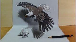 Hunting Eagle - Drawing 3D Eagle Illusion - Vamos