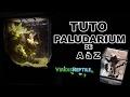 TUTO - CREER UN TERRARIUM PLANTÉ / PALUDARIUM