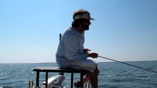 huge black drum battle on 8 wt fly rod part 1 of 2