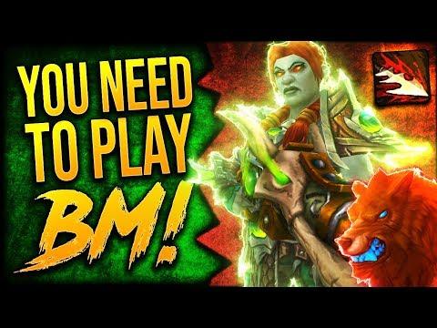 THE MASSIVE BM HUNTER! 8.2 Beast Mastery Hunter GUIDE